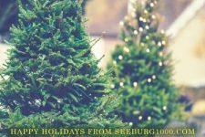 happy-holidays-seeburg-1000