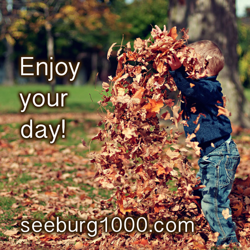 enjoy-your-day-seeburg1000-background-music