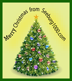 Merry-Christmas-thanks-for-listening-from-seeburg1000-2017